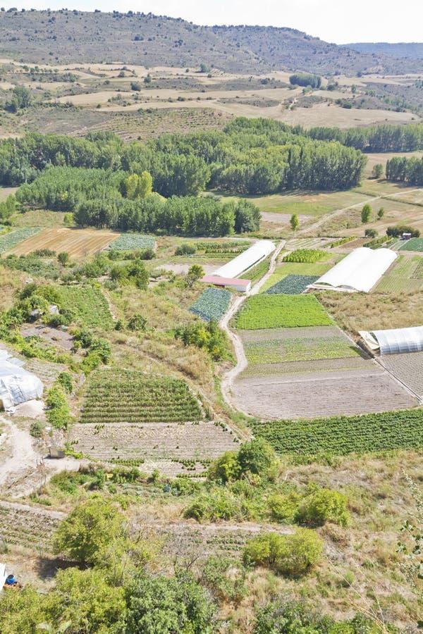 Gecultiveerd land in een landelijk landschap royalty-vrije stock fotografie