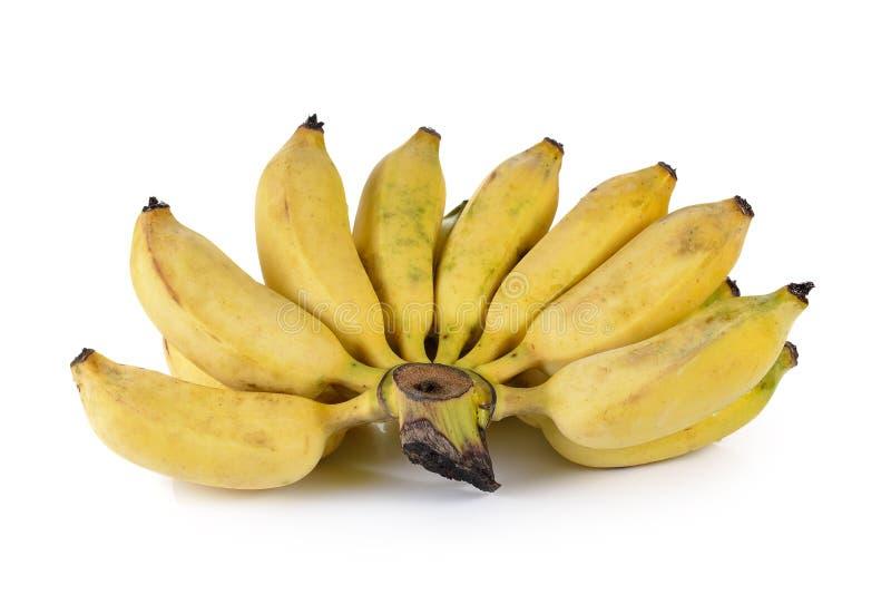 Gecultiveerde die banaan op witte achtergrond wordt geïsoleerd royalty-vrije stock afbeelding