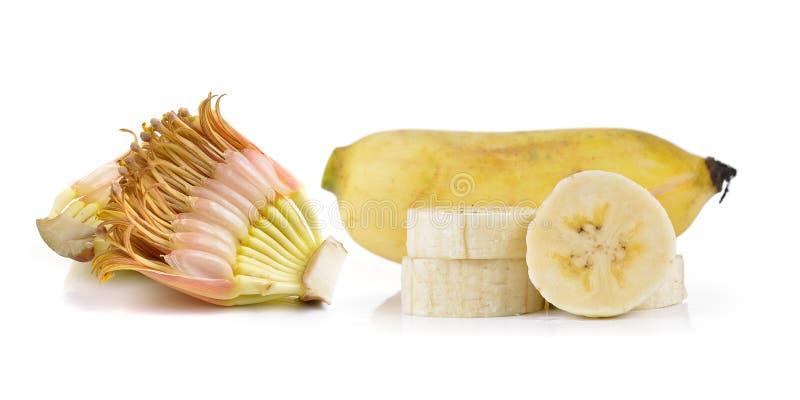 Gecultiveerde die banaan op witte achtergrond wordt geïsoleerd stock fotografie