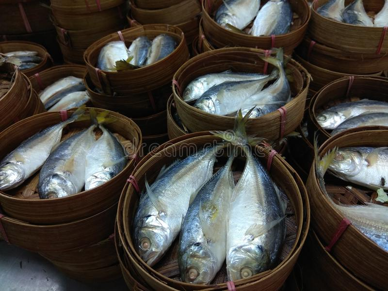 Gedämpfte Fische lizenzfreie stockbilder