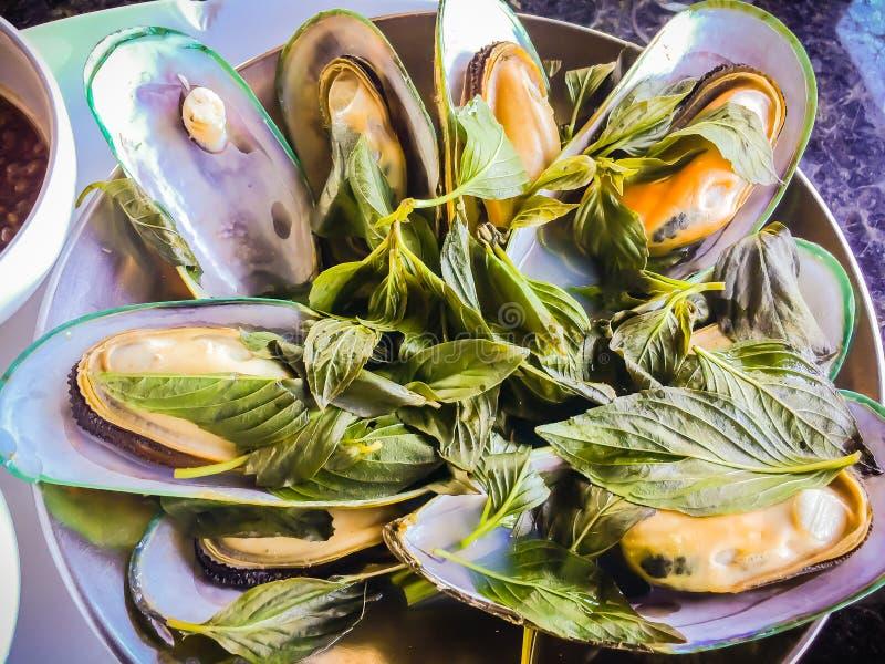 Gedämpfte Neuseeland-Miesmuscheln mit thailändischem Kraut im Meeresfrüchterestaurant Grün-lippige Miesmuschel Neuseelands (Perna stockfotos
