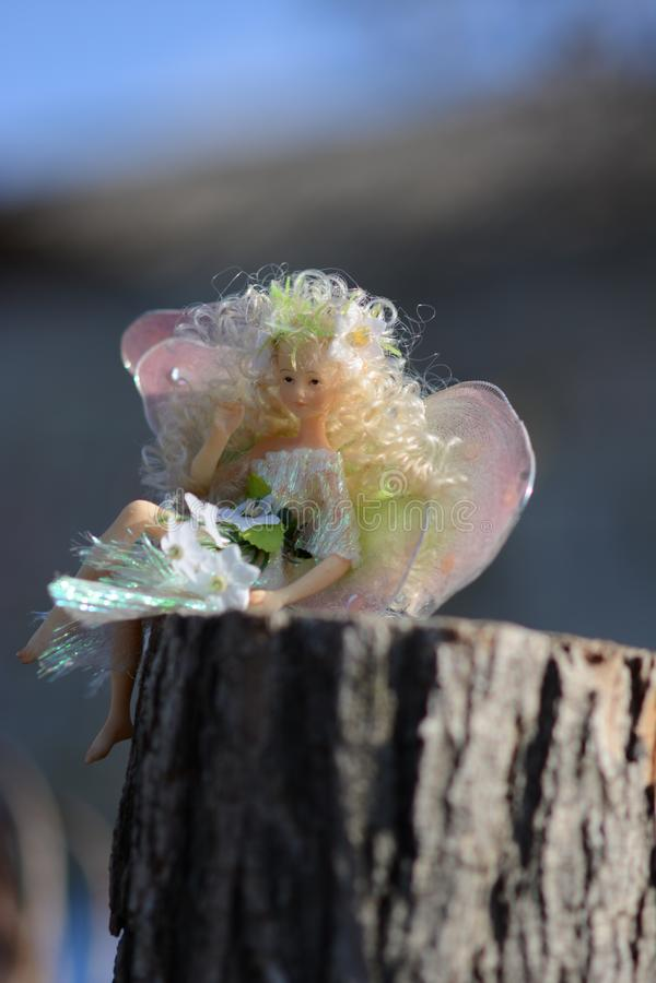 Gedanken der Schmetterlingspuppe stockbilder