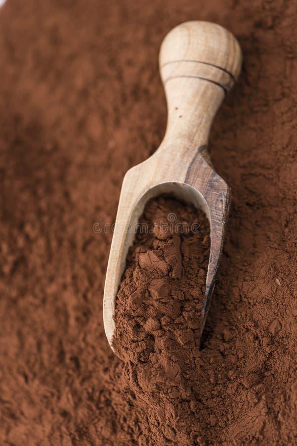 Gedeelte van Cacaopoeder stock foto