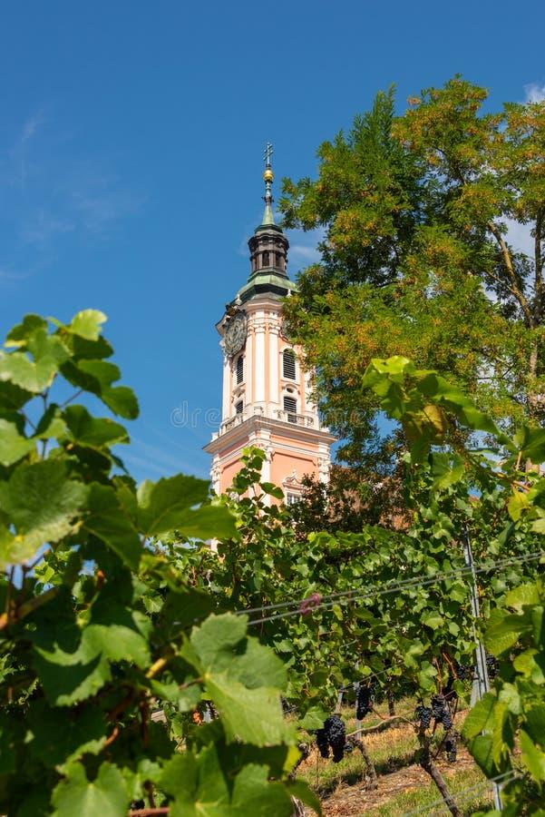 Gedeeltelijke die mening door wijngaarden van de toren van de mooie oude bedevaartkerk wordt gezien in Birnau royalty-vrije stock afbeelding