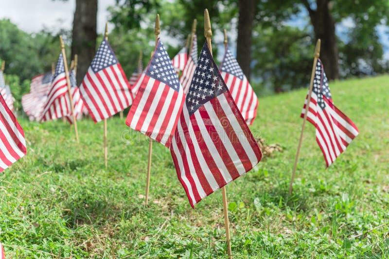 Am Gedenktag in Dallas, Texas, werden auf grünem Rasen unter gereiften Bäumen amerikanische Flaggen ausgestellt lizenzfreies stockfoto