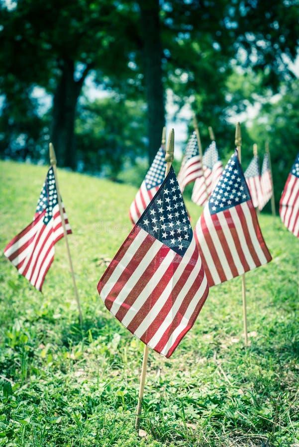 Am Gedenktag in Dallas, Texas, werden auf grünem Rasen unter gereiften Bäumen amerikanische Flaggen ausgestellt lizenzfreie stockfotos