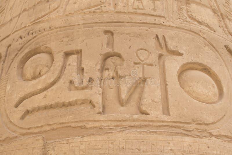 Gedetailleerde mening van de cartouche (Karnak, Egypte) royalty-vrije stock foto's