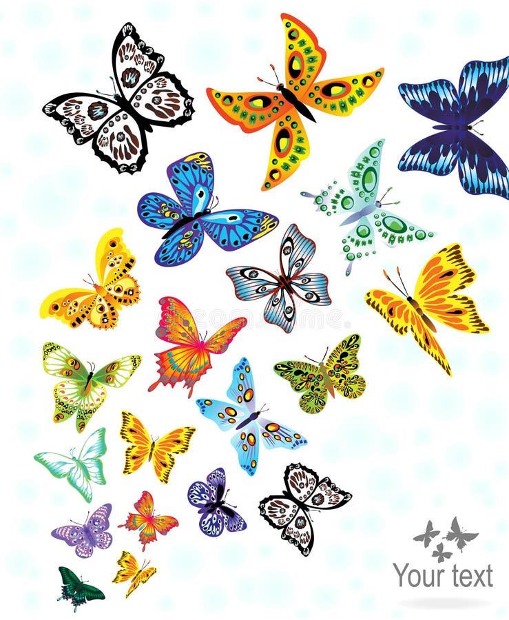 Gedetailleerde vlinderelementen royalty-vrije illustratie