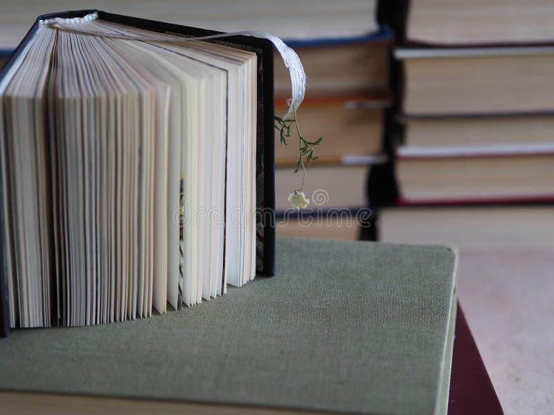 Gedichtsammlung mit einem Bookmark und einer trockenen kleinen Blume lizenzfreie stockfotografie