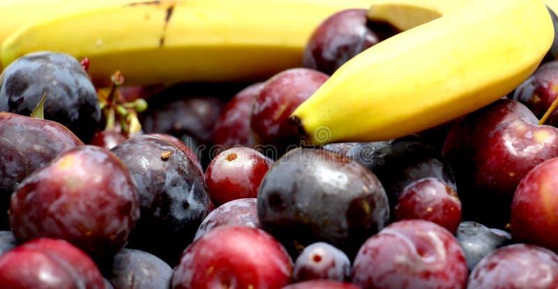 gediente frische Früchte auf einer Tabelle, readu für das Concuming lizenzfreie stockfotos