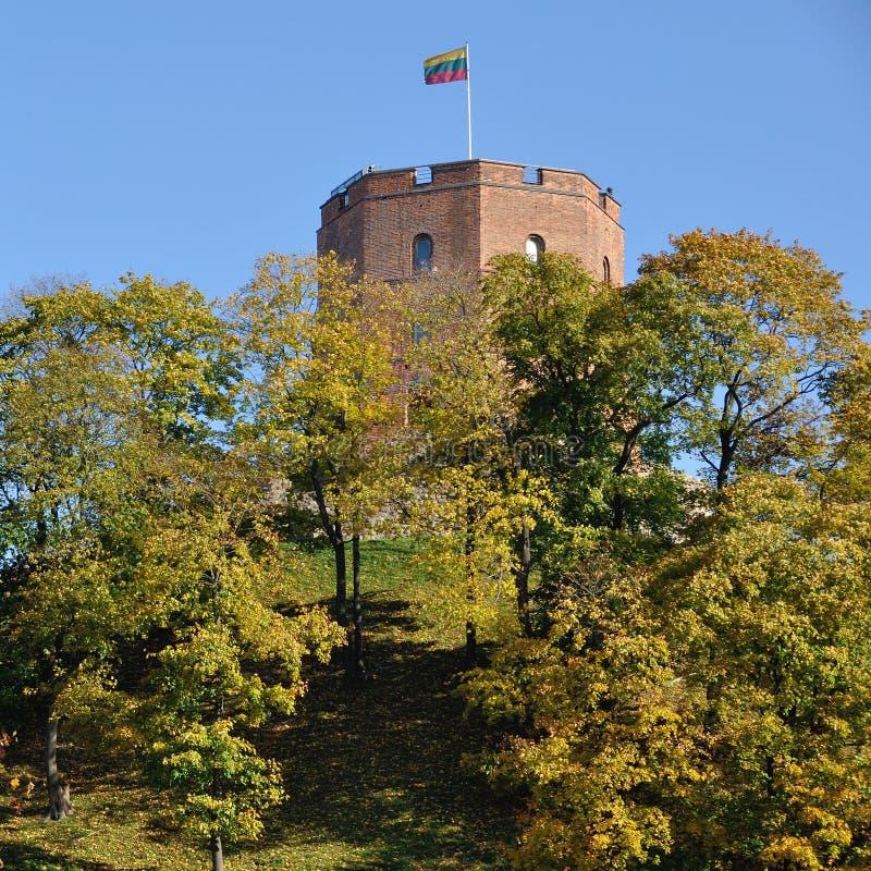 Gediminas城堡在维尔纽斯 库存照片