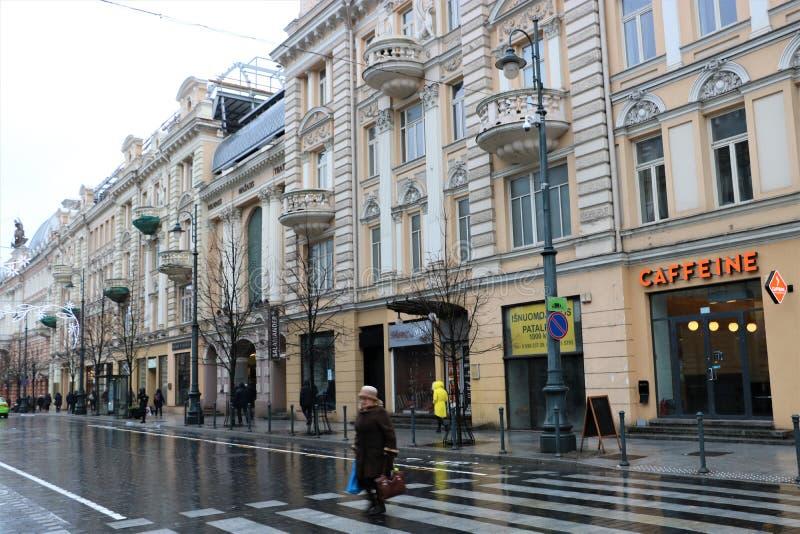 Gediminas aveny i Vilnius arkivbild