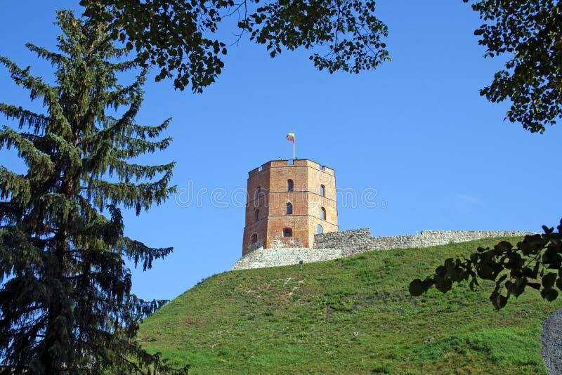 Gediminas-` Turm oder Schloss, der Rest des oberen Schlosses in Vilnius, Litauen mit litauischer Flagge stockbilder
