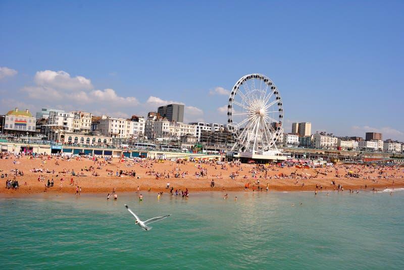 Gedrängter Brighton Beach mit Brighton-Rad stockfoto