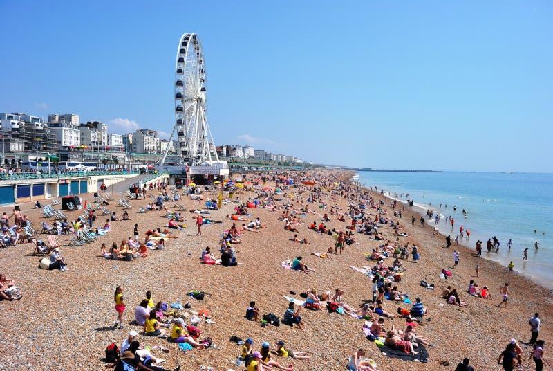 Gedrängter Brighton Beach mit Brighton-Rad stockfotos