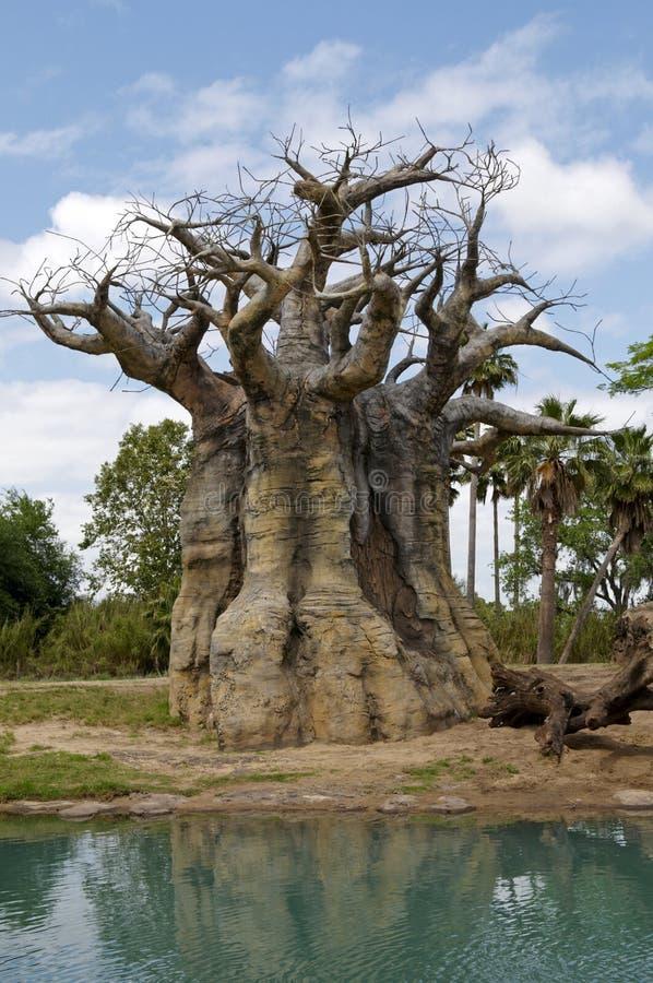 Gedreht Baum stockfoto