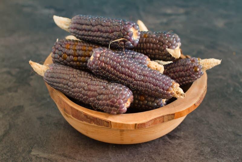 Gedroogde paarse maïs op een bijttafel stock afbeelding