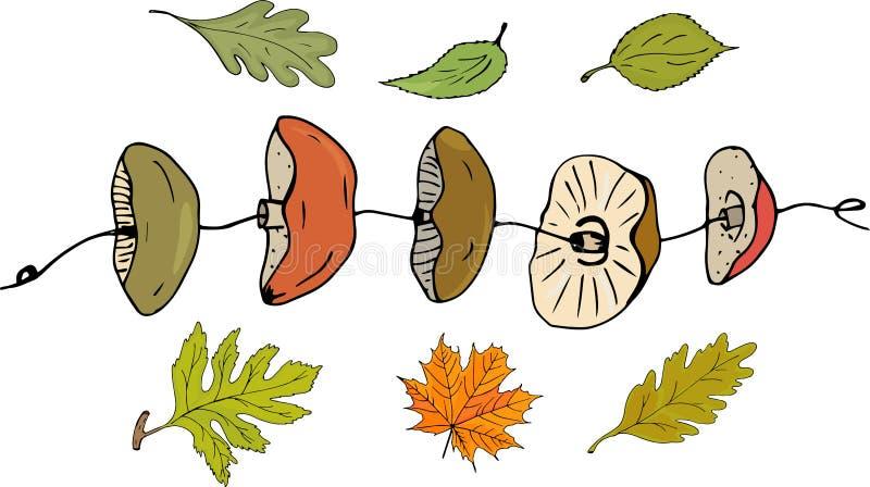Gedroogde paddestoelen op een koord en de herfstbladeren Ge?soleerde voorwerpen Vector royalty-vrije illustratie