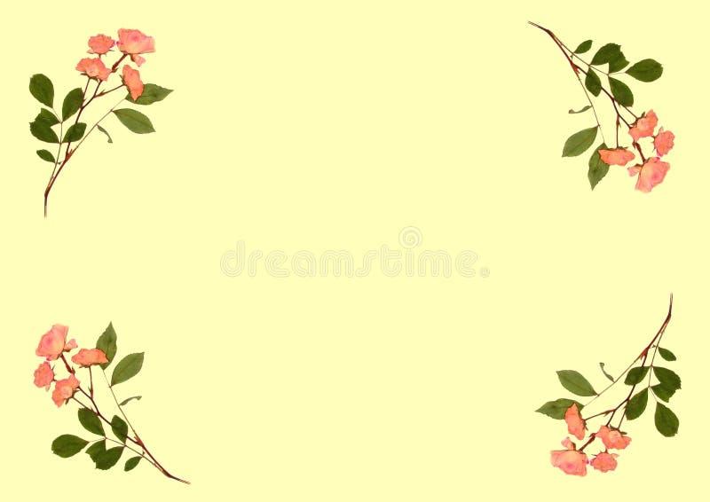 Gedrukte Roze Rozen royalty-vrije illustratie