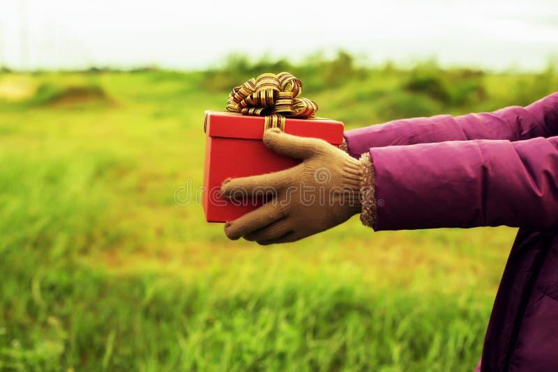 Geef de gift op de Dag van Liefde stock fotografie