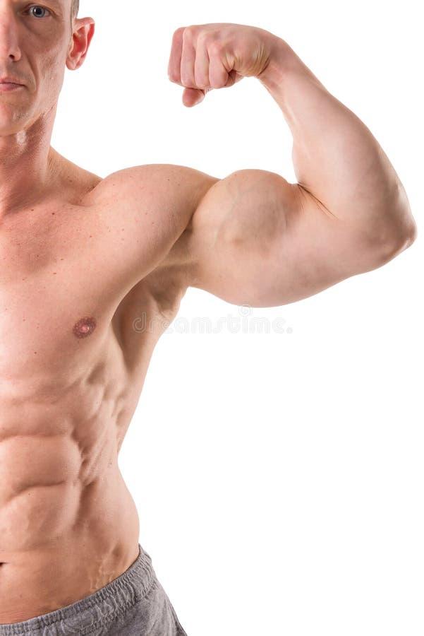 Geeignete muskulöse Mannaufstellung lizenzfreie stockfotografie