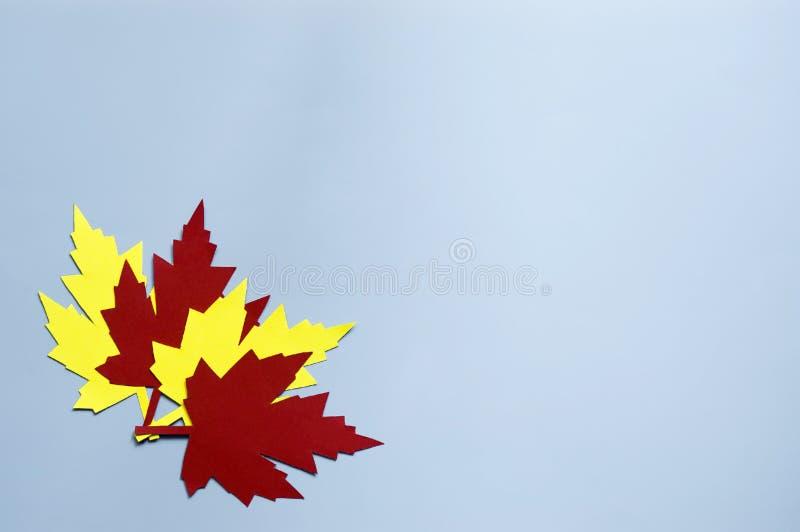 Geel en rood papier herfstbladeren royalty-vrije stock foto's