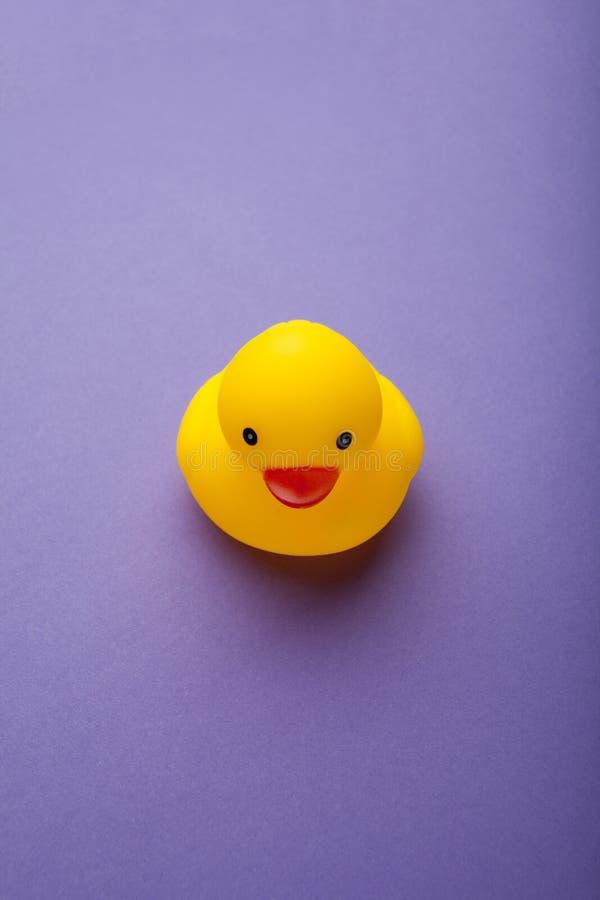 Geel grappig eendstuk speelgoed op purpere verticale achtergrond, royalty-vrije stock afbeelding