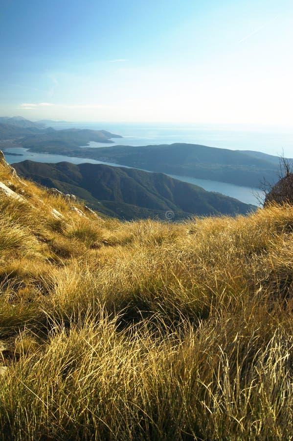 Geel gras en overweldigende meningen van de Boka-Baai, Montenegro stock foto