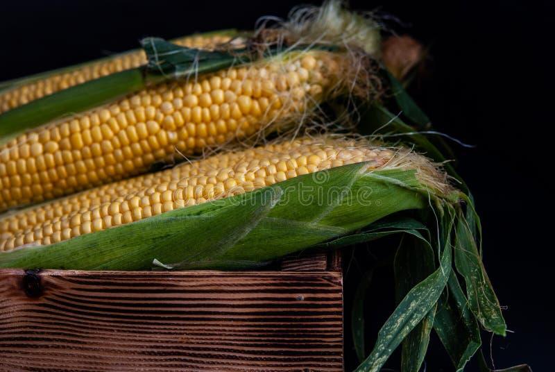 Geel zoet ruw graan in een houten doos op een zwarte achtergrond stock afbeelding
