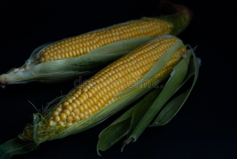 Geel zoet ruw graan op een zwart close-up als achtergrond stock fotografie