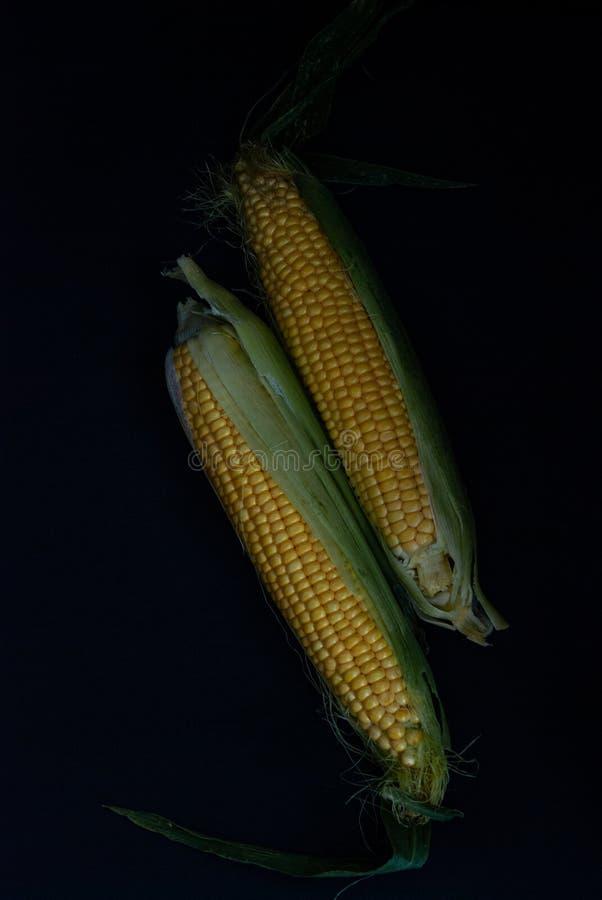 Geel zoet ruw graan op een zwarte achtergrond royalty-vrije stock afbeeldingen