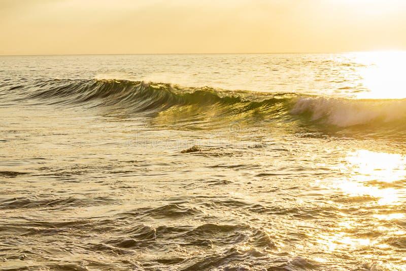 Geelgroene golfmuur die met het breken van schuim, op oceaanuitgestrektheid zwellen stock foto's