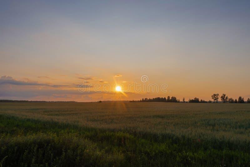 Geeloranje schijf van de het plaatsen zon over de horizon en een weinig bewolkt royalty-vrije stock afbeeldingen
