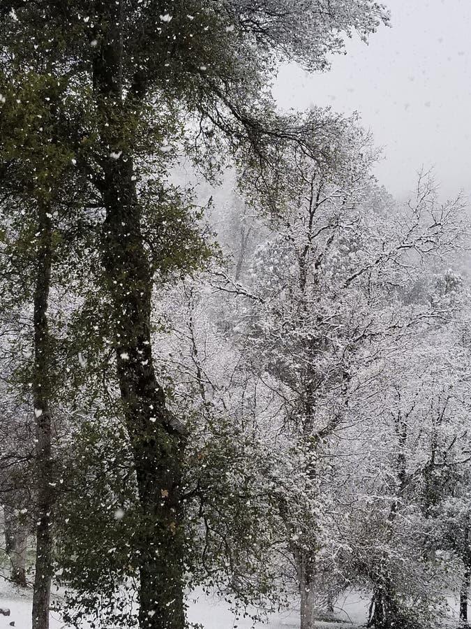 Geen Dag, zoals een Sneeuwdag royalty-vrije stock foto's