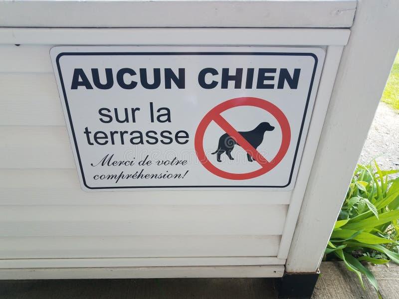 Geen honden op het terras danken u voor begrip in het Frans royalty-vrije stock afbeeldingen