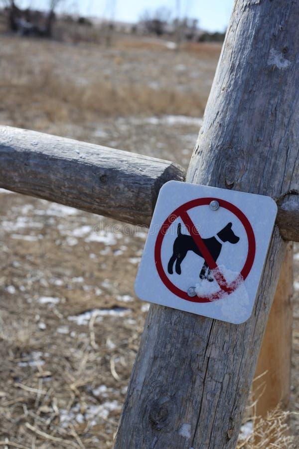 Geen honden toegestaan teken op post stock afbeeldingen