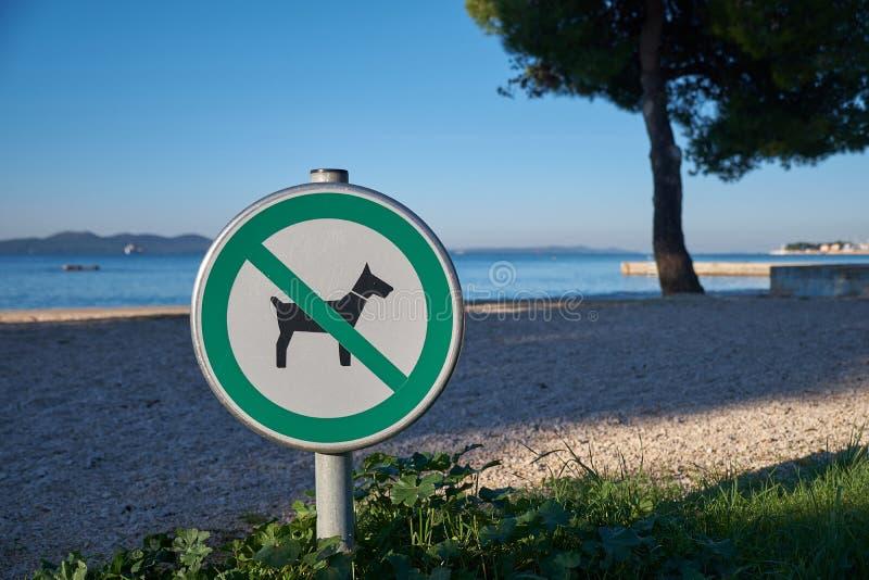 Geen toegestane honden stock foto