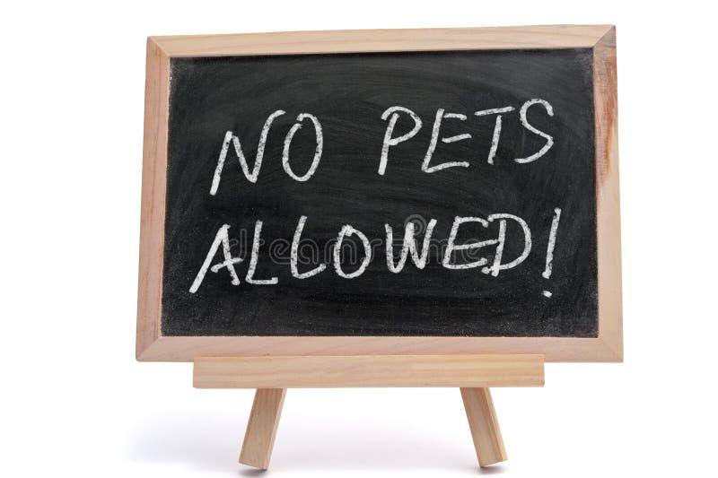 Geen Toegestane Huisdieren stock foto