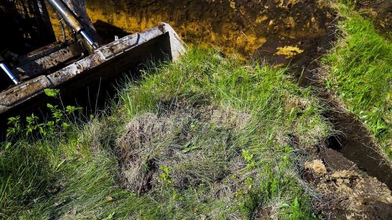 Geerntete Ansicht des Baggereimers grabend in grasartiges Feld während der Erdarbeiten stockfoto
