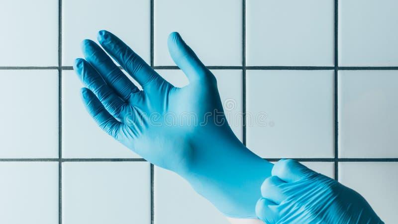 geernteter Schuss der medizinischen Arbeitskraft setzend auf blaue Gummihandschuhe vor mit Ziegeln gedeckt stockbild