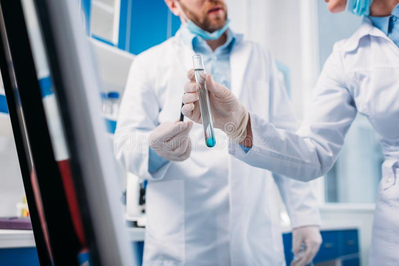 geernteter Schuss von Wissenschaftlern in den weißen Mänteln mit Rohr lizenzfreie stockfotografie
