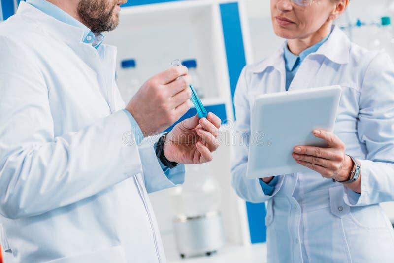 geernteter Schuss von Wissenschaftlern in den weißen Mänteln mit Rohr mit Reagens und Tablette lizenzfreie stockbilder