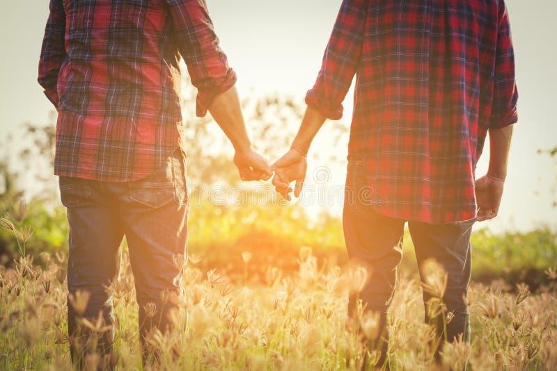 Geerntetes Bild von homosexuellen Paaren fangen den Kolben lizenzfreies stockfoto