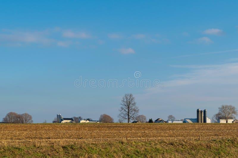Geerntetes Feld von Mais, mit Bäumen und einem amischen Gutshaus, an einem schönen Tag mit blauem Himmel, Lancaster County, PA stockbilder