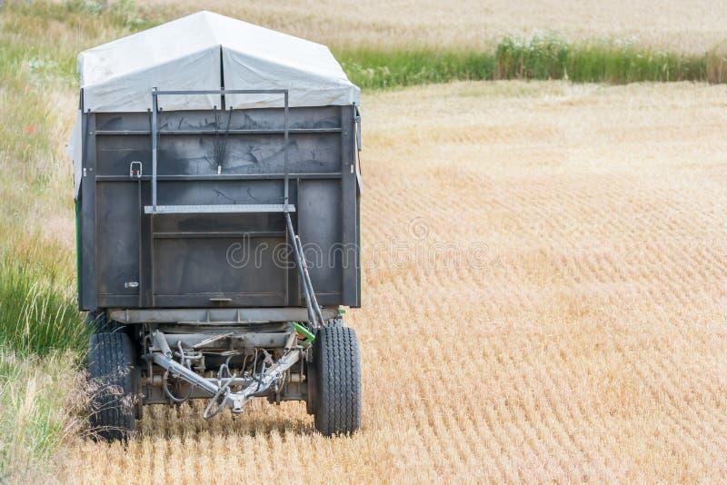 Geerntetes Getreidefeld mit dem Anhänger eines Traktors stockbild