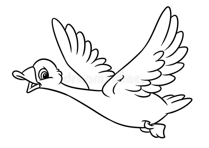 migrating birds coloring pages   566x800