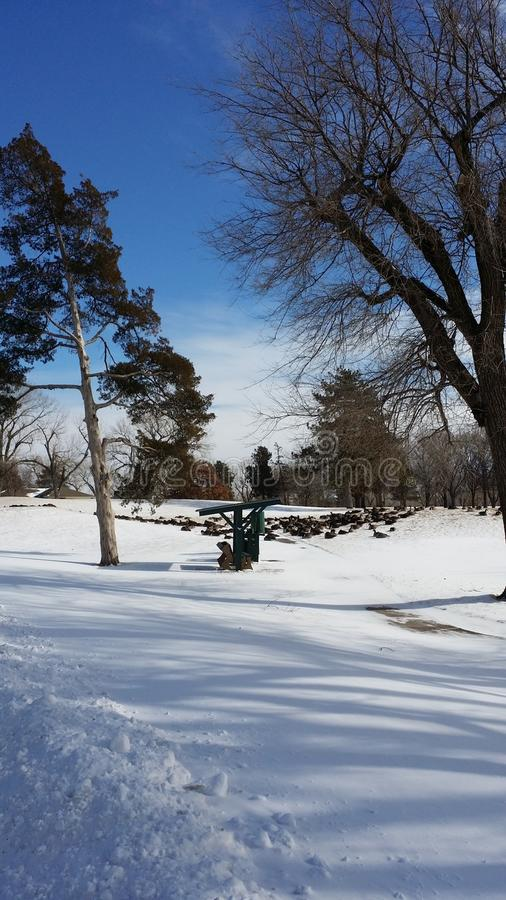 Geese At A Snow Covered Golf Course II stock images