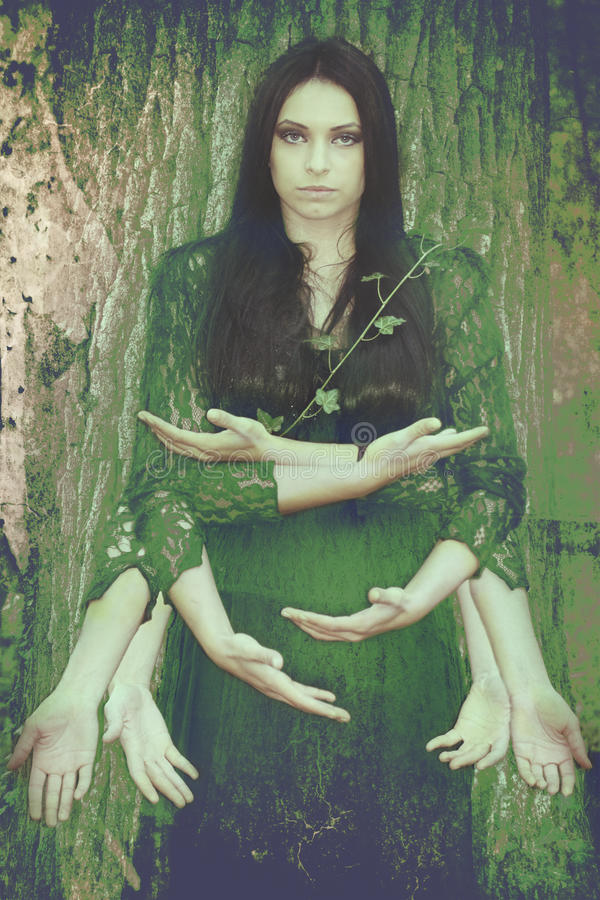 Geest van het bos, de fusie van de mens en aard stock afbeeldingen