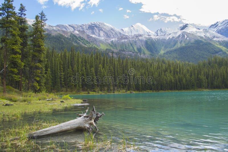 Geesteiland op Meer Maligne in Canada stock foto