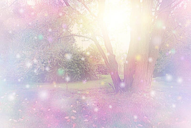 Geestorbs rond boom wordt verzameld die gouden wit licht uitzenden dat royalty-vrije illustratie